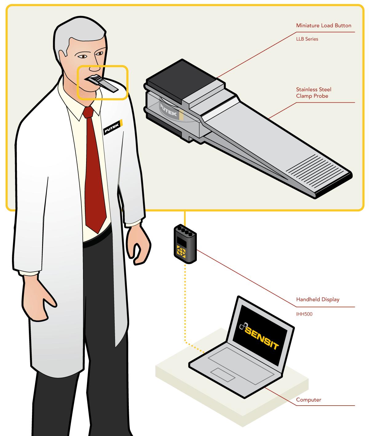 Bite Force Measurement Study