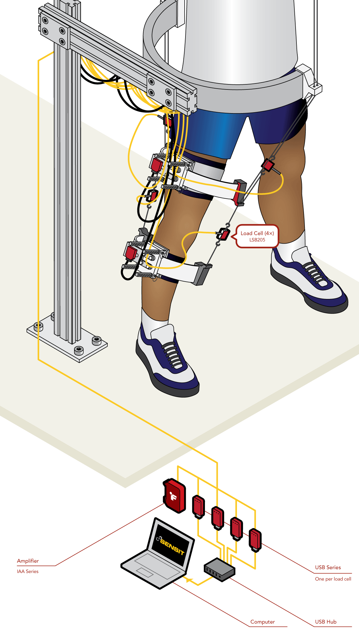 Robotic Leg Rehabilitation Device