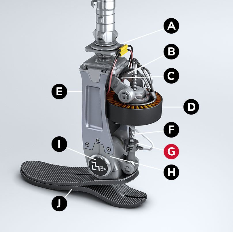 Diagram of the actuator with the callouts indicated below